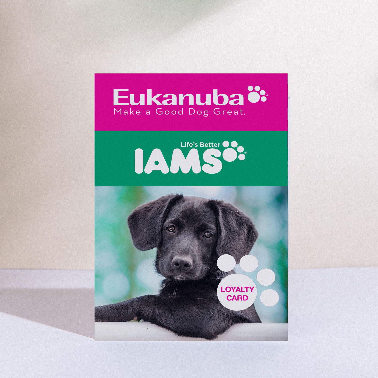 Loyalty Program – Eukanuba & IAMS